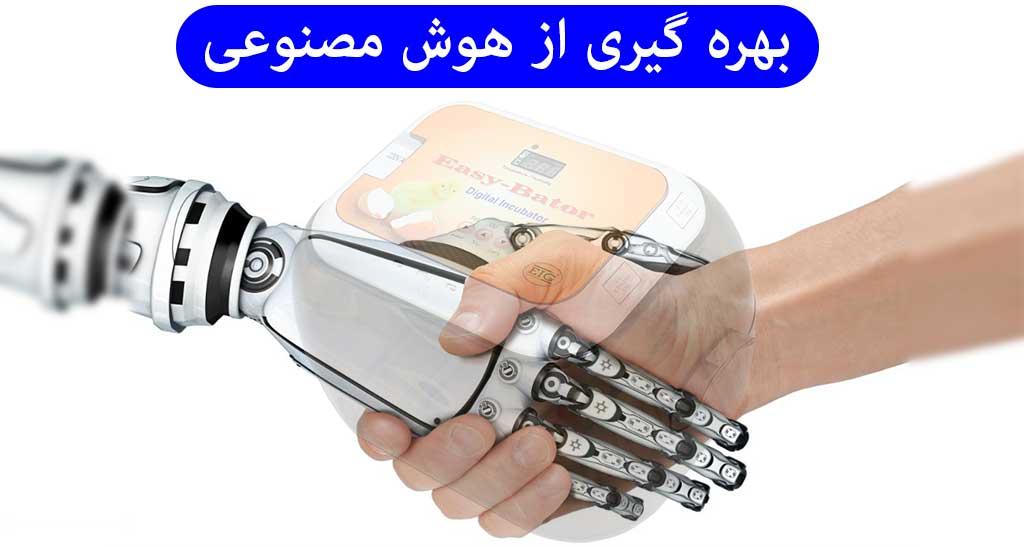 بهره گیری از هوش مصنوعی در دستگاه جوجه کشی خانگی