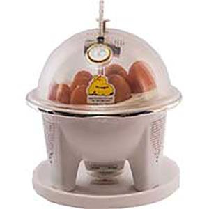 ۱۰-egg-incubator-1