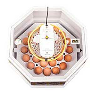 ۳۰-egg-incubator-01-1