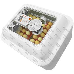 ۹۶-egg-incubator