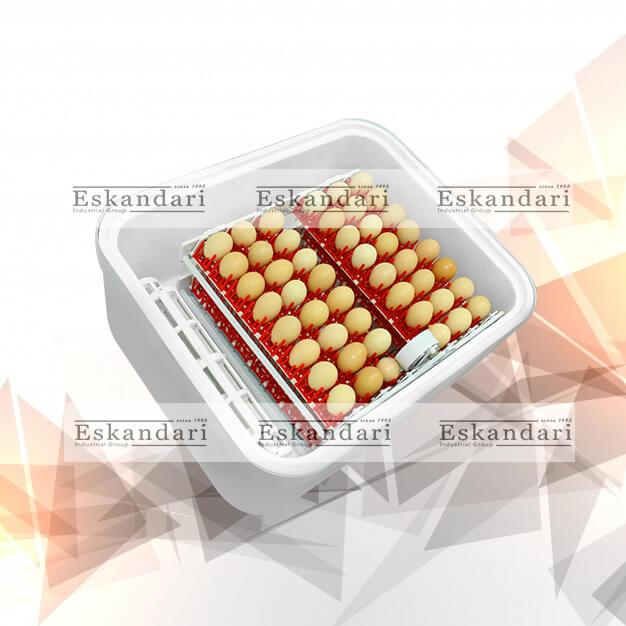 easy bator2 egg incubator