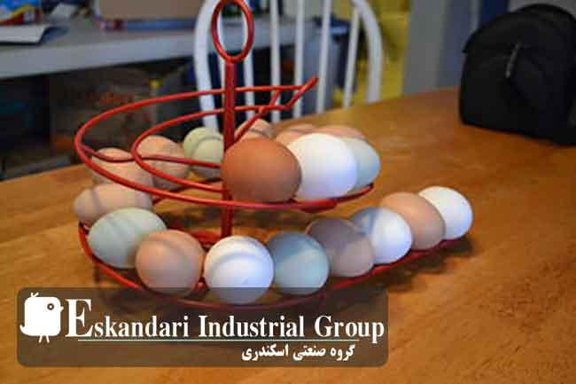 تمیز-کردن-تخم-مرغ-کثیف