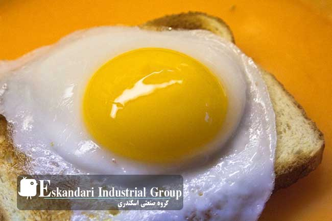Duck-egg