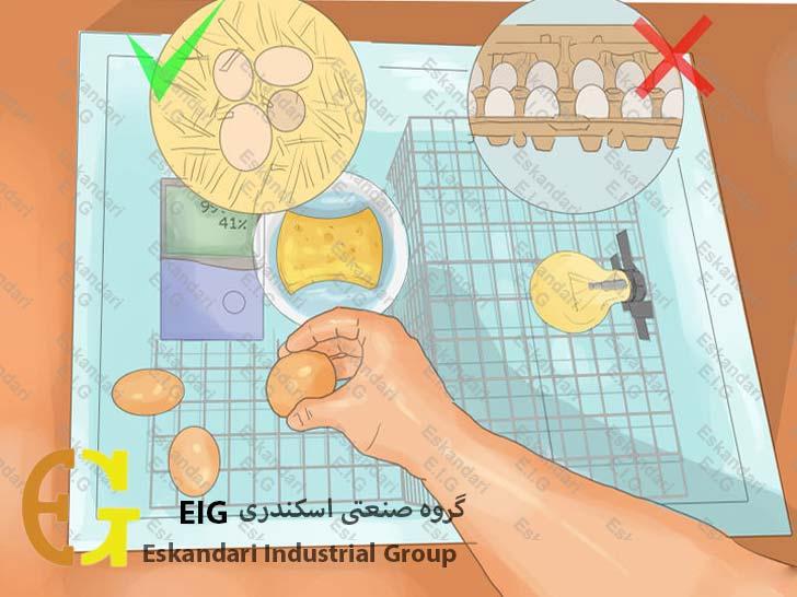 ساخت دستگاه جوجه کشی ساده ی خانگی - مرحله هفتم