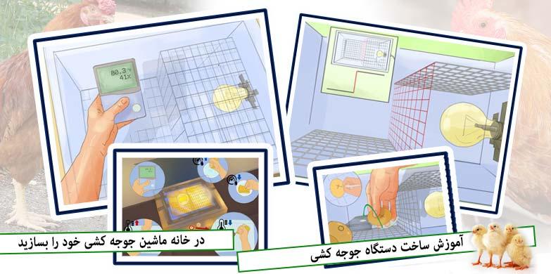 ساخت دستگاه جوجه کشی در خانه