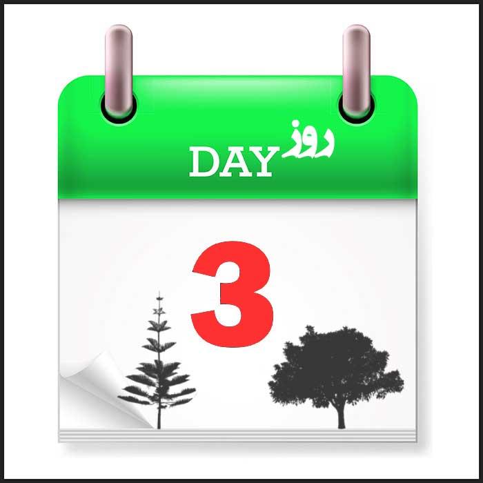 سه روز آخر جوجه کشی