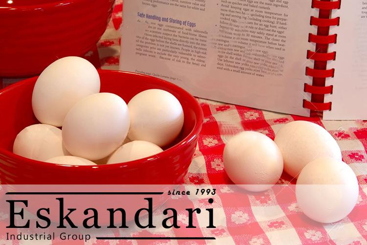 تاریخچه تخم مرغ