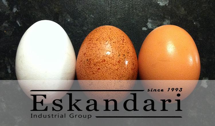 ترکیبات تخم مرغ
